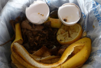 theclosedloop_happycomposting